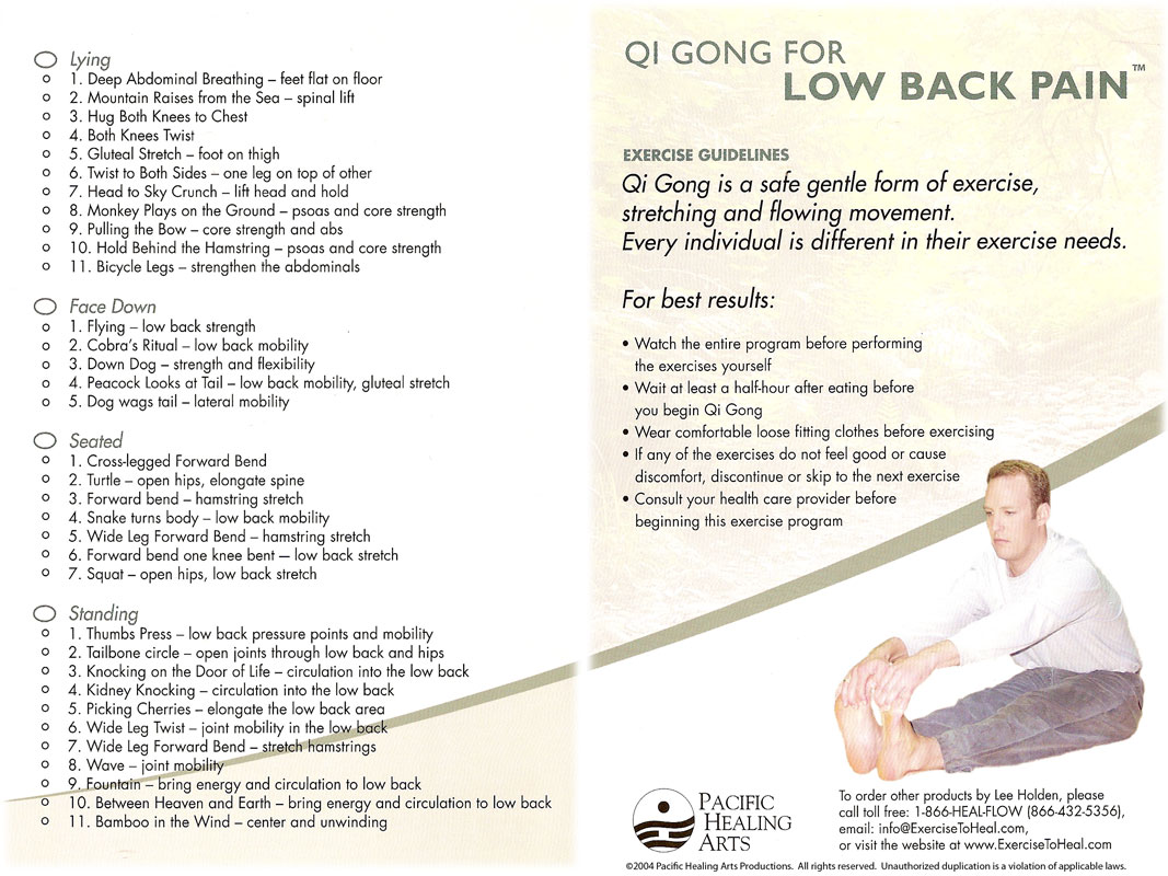 Qi Gong for Low Back Pain by Lee Holden (DVD) - Featured on