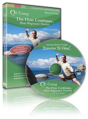 Qi Gong the Flow Continues More Beginners